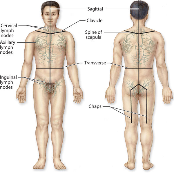 manual lymphatic drainage massage near me